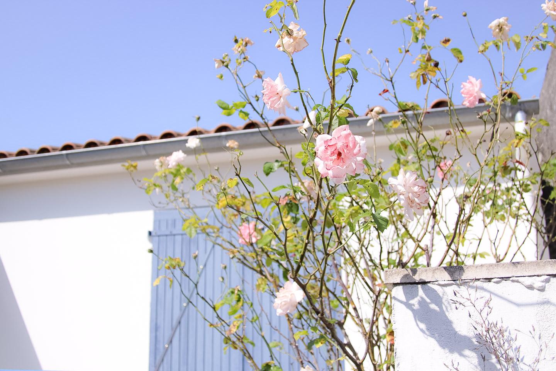 Elodie-Blog-village-arceau-facade-roses