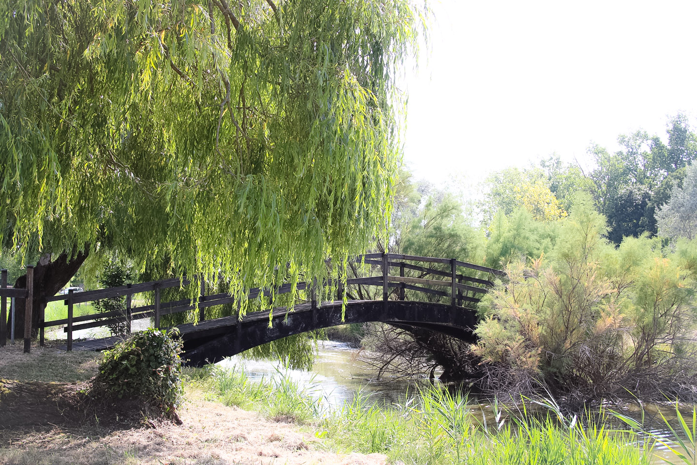 Elodie-Blog-village-arceau-pont