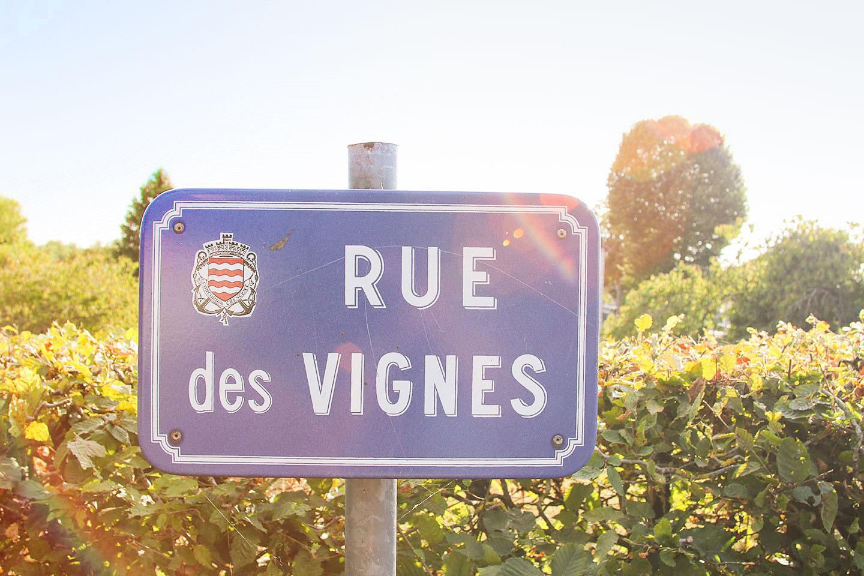 elodie-blog-sur-la-nationale-7-rue-des-vignes