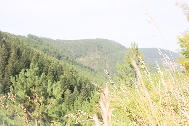 elodie-blog-sur-la-nationale-7-laguiole