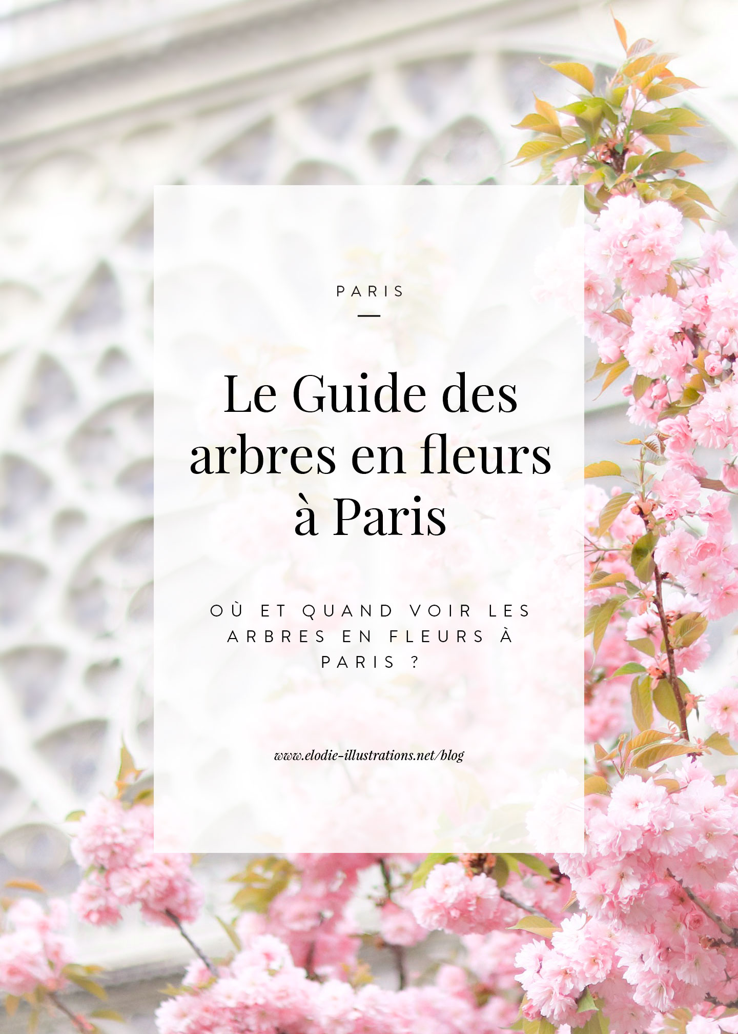 le guide pratique des arbres en fleurs paris lodie. Black Bedroom Furniture Sets. Home Design Ideas
