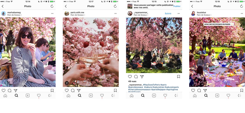 Elodie-illustratrice-paris_Blog_ou-trouver-arbres-fleurs-paris_instagram